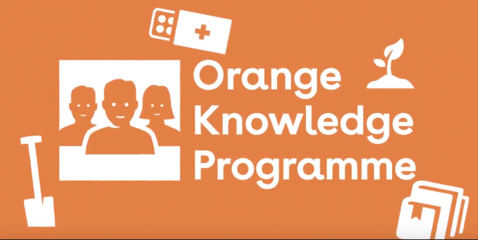 Call open for Orange Knowledge Programme in The Netherlands