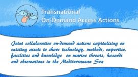 Image of (694506) The Transnational On-Demand Access action call is live now!