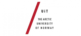 Image of (480385) Norway: Arctic MSCA-IF program 2020 - Develop an MSCA-IF proposal with a supervisor at UiT