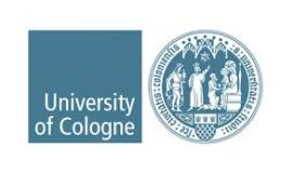 Image of (607834) Postdoctoral Position (f/m/d) Faculty of Law , Academy for European Human Rights Protection University of Cologne - Cologne, Germany