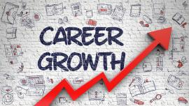 Career Growth Drawn on Brick Wall