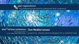 Image of (598107) Blue Med Final Conference