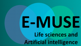 Image of (649258) Europe: 10 PhD positions in Life Sciences & Artificial Intelligence (MSCA ITN E-Muse)