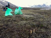 Fieldwork at Czech polar ecology station in Svalbard
